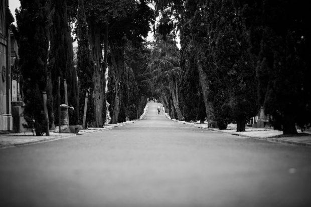 road-869589_1280 (1)